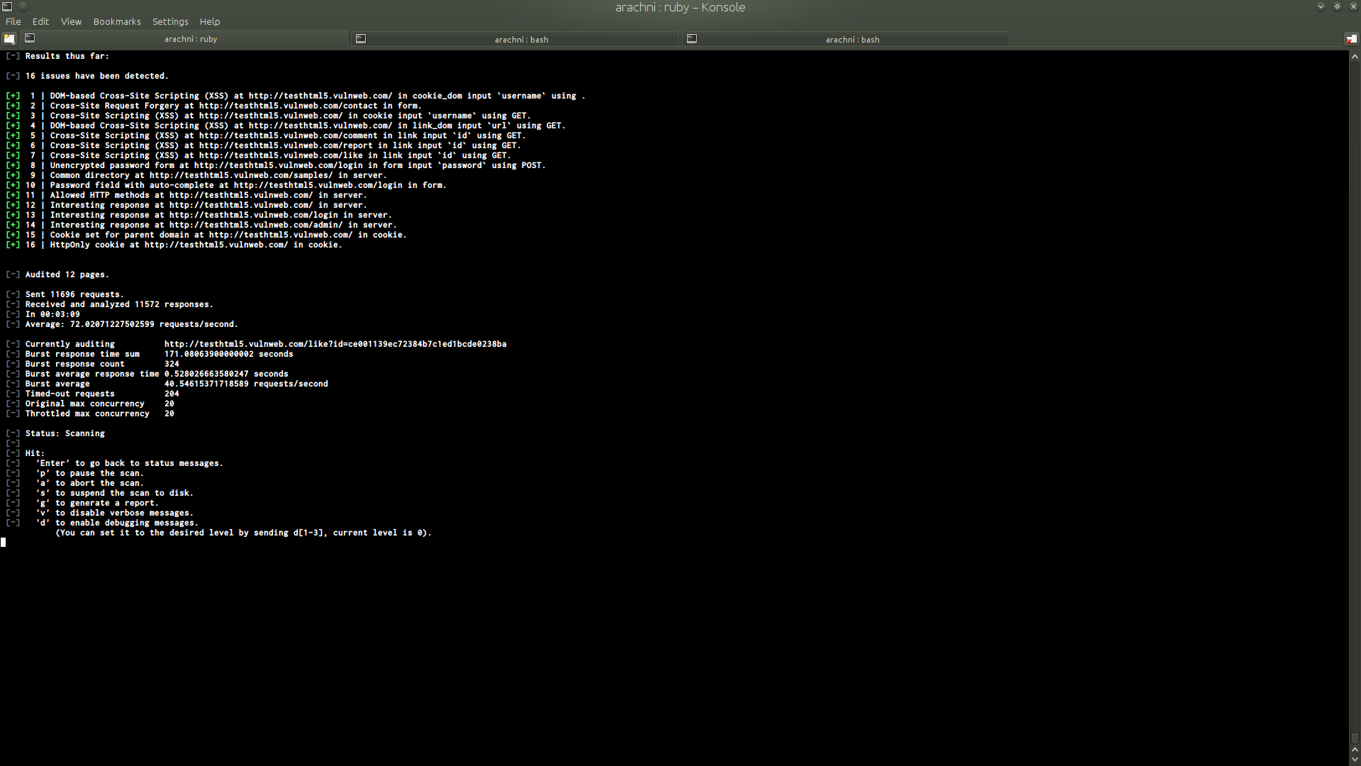 Command Line Interface Arachni Web Application